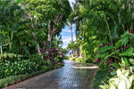 Escape From Tropical Estate